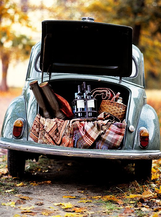 one_kings_lane_holiday_picniccar